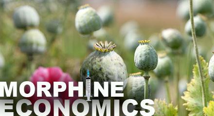 Morphine Economics